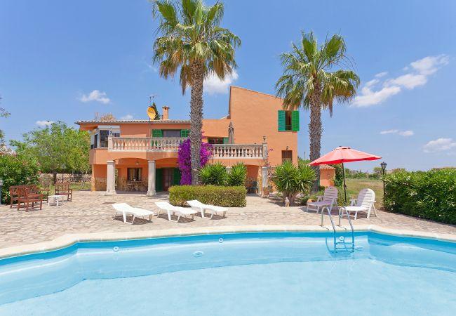 Villa in Santa Maria del cami - Villa Santa Maria